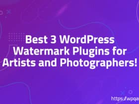 Best 3 WordPress Watermark Plugins for Artists and Photographers!
